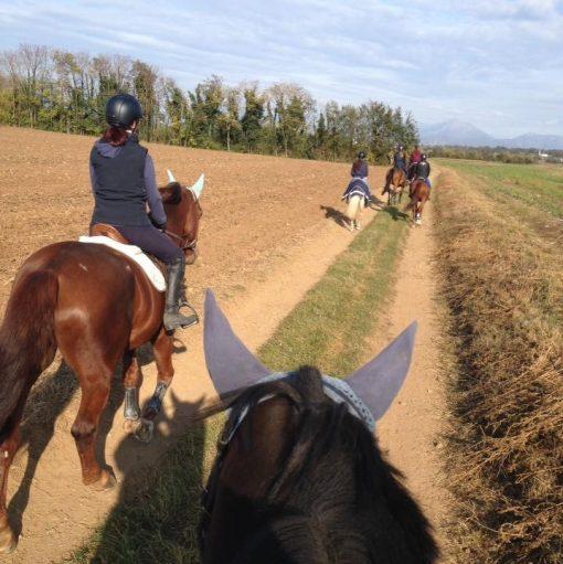 circolo ippico alle ortensie 3 lezioni a cavallo