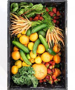 kilometrozero cassetta maxi frutta e verdura